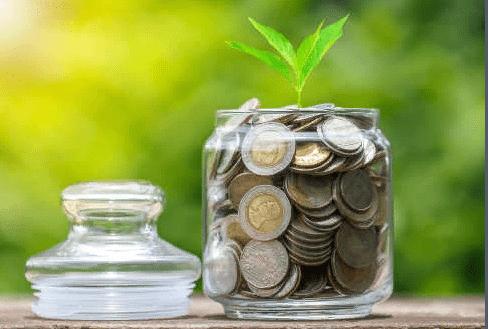 Как привлечь в дом деньги: советы Ванги на каждый день