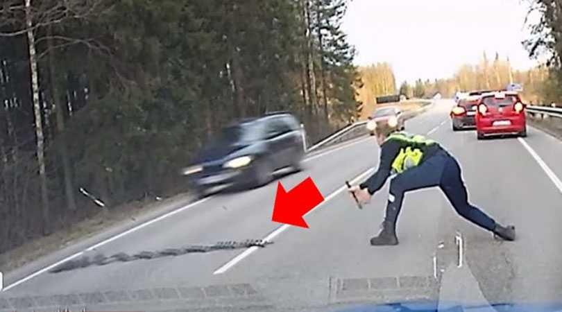 Полицейский из Эстонии эффектно остановил автомобиль наркомана