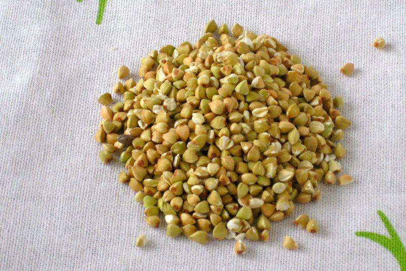 Зеленая гречка: польза и вред, чем отличается от обычной, как прорастить зеленую гречку и как правильно её приготовить