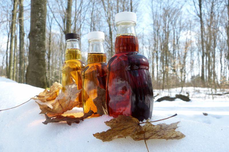 Кленовый сок: польза и вред для организма человека, состав, применение, противопоказания