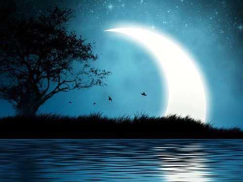 Заговоры на растущую Луну в ноябре 2018 года: привлекаем деньги, удачу и любовь