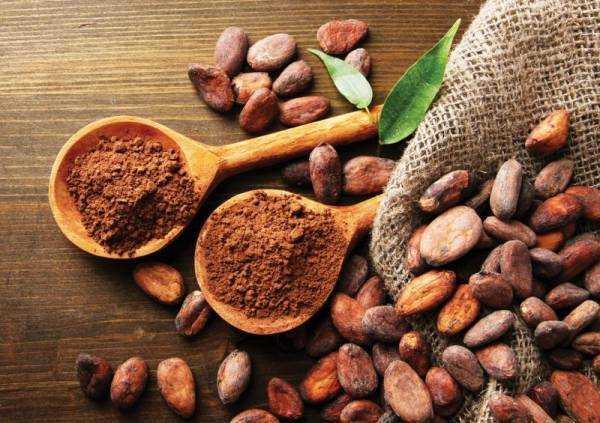 Какао: польза и вред для здоровья, применение и противопоказания