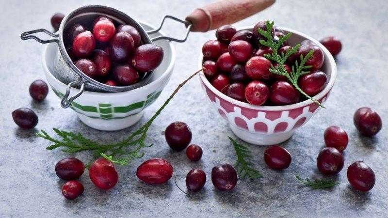 Клюква: полезные лечебные свойства и противопоказания
