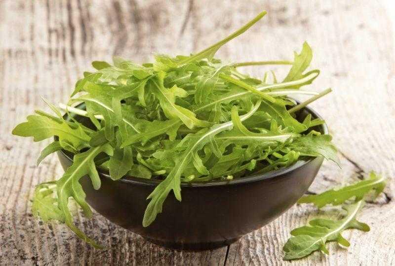 Салат из рукколы - польза и вред для женщин