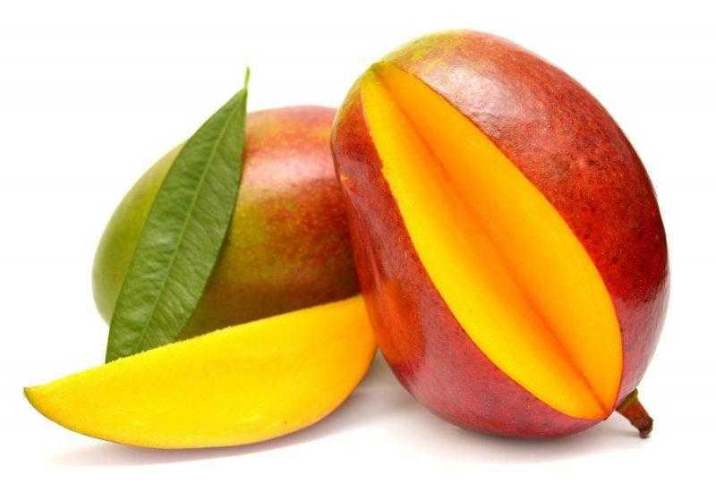 Манго фрукт – полезные свойства и вред для женщин