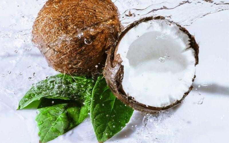 Чем полезен кокос для организма: полезные свойства для женщин и мужчин, противопоказания