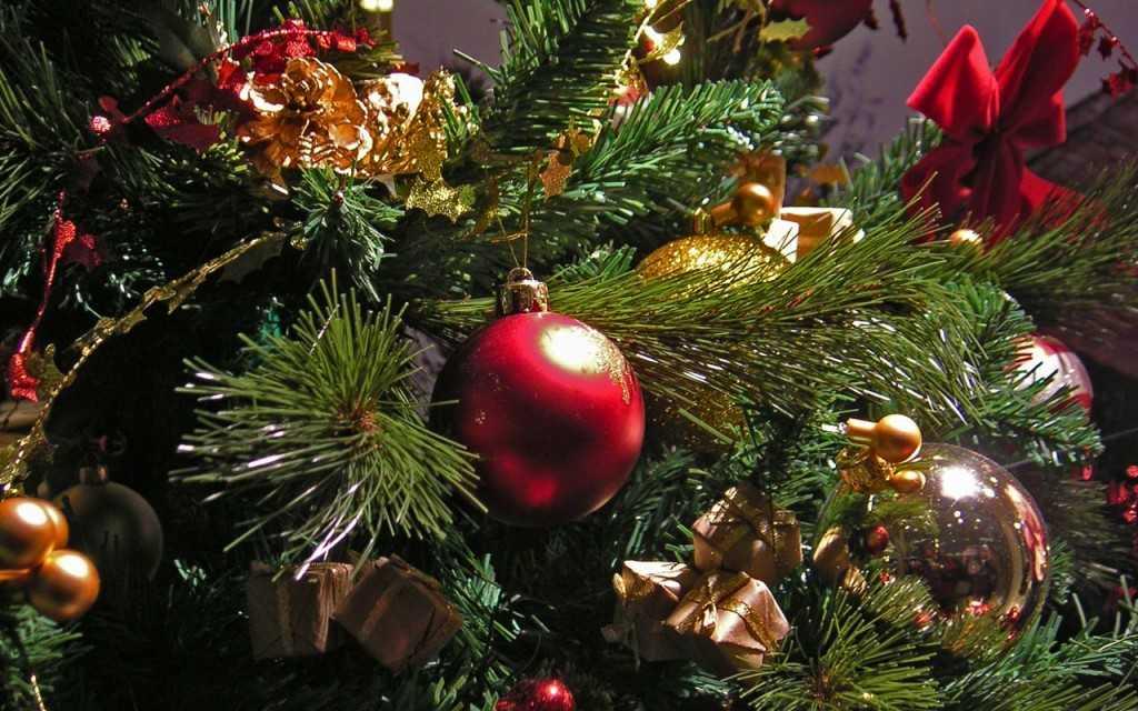 Куда поставить новогоднюю елку по фэн-шуй - Денежный магнит