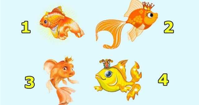 Выберите золотую рыбку и узнайте, когда осуществятся ваши мечты!