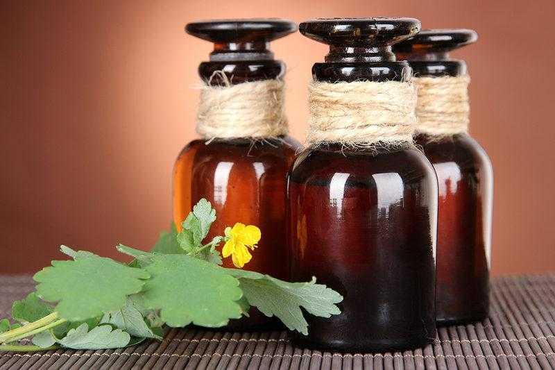 Настойка чистотела на водке, рецепт и применение