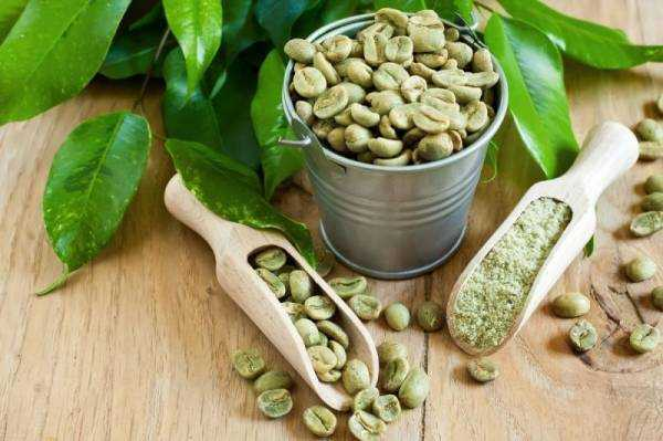 Зеленый кофе: польза и противопоказания, как правильно заваривать и пить для похудения