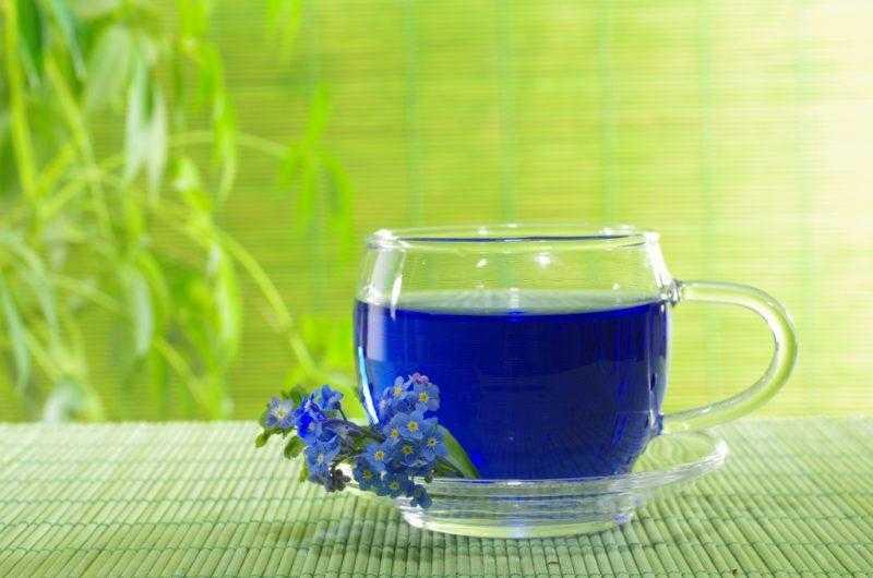 Синий чай из Таиланда – полезные свойства