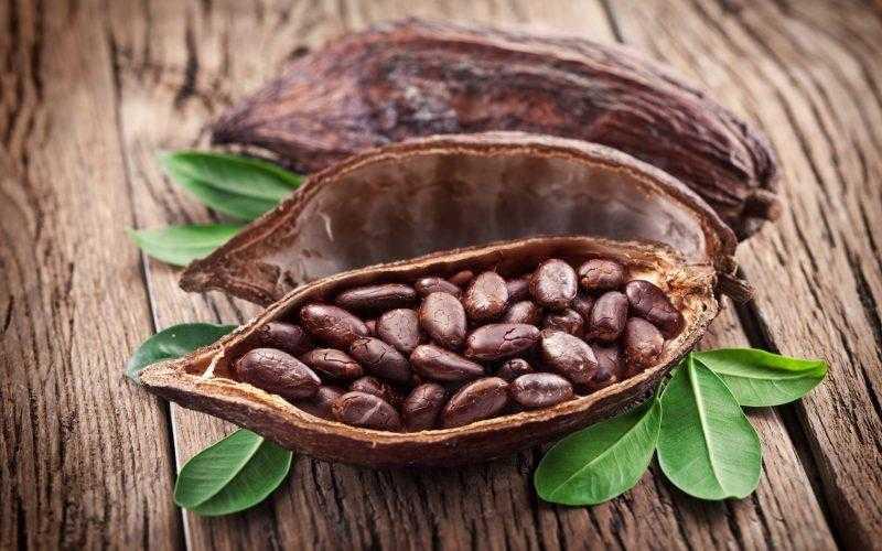 Какао бобы: где растут, применение и полезные свойства бобов