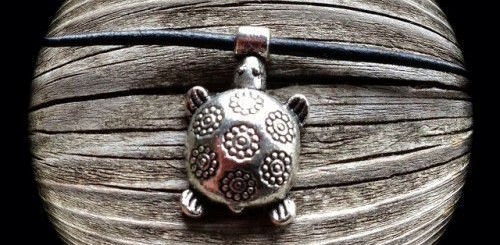Полное значение и применение талисмана с черепахой