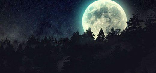 Лунный календарь на август 2019 года: фазы луны и благоприятные дни
