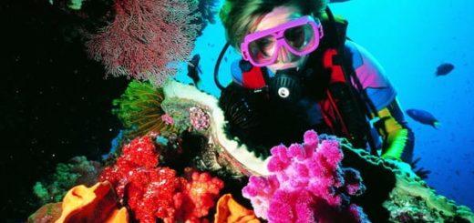 К чему снится, что вы плавали под водой, по сонникам Странника, Лоффа
