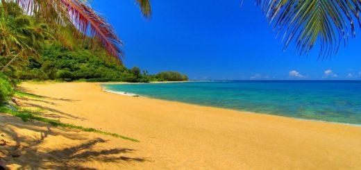 К чему снится пляж по сонникам Фрейда, Миллера, Екатерины