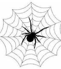 К чему снится укус паука по сонникам Фрейда, Ванги, Эзопа, Миллера, Цветкова