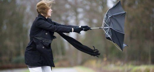 К чему снится сильный ветер по сонникам Миллера, Фрейда