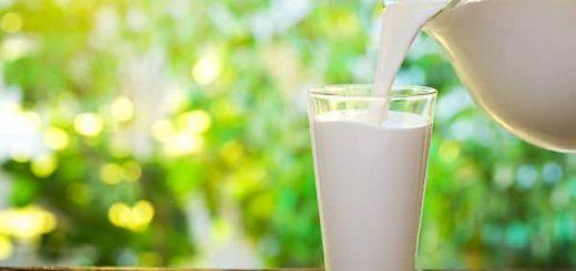 К чему снится молоко в банке по сонникам Миллера, Фрейда