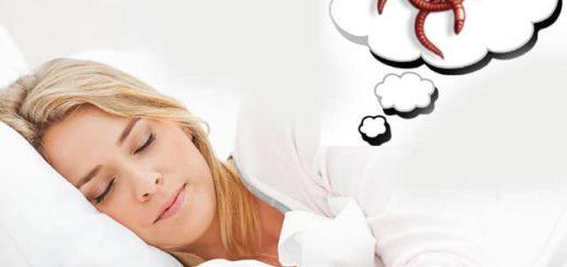К чему снятся белые черви: расшифровка сна по сонникам Менегетти, Фрейда, Нострадамуса