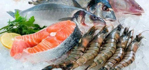 К чему снится сырая рыба по сонникам Цветкова, Фрейда, эротическому