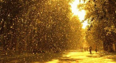 К чему снится снег летом во сне?