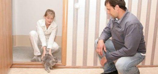 Приметы при переезде в новую квартиру, ритуалы и правила