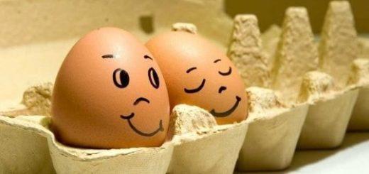 К чему снится яйцо по сонникам Фрейда, Ванги и Миллера