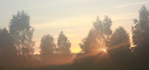 К чему снится туман по сонникам Фрейда, Миллера