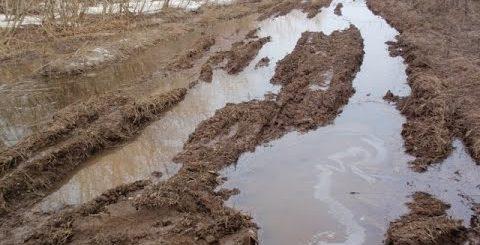 К чему нам снится грязь - сонники обязательно подскажут ответ