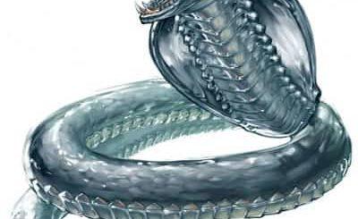 К чему снится змея по сонникам - Миллера, Ванги, Эзопа
