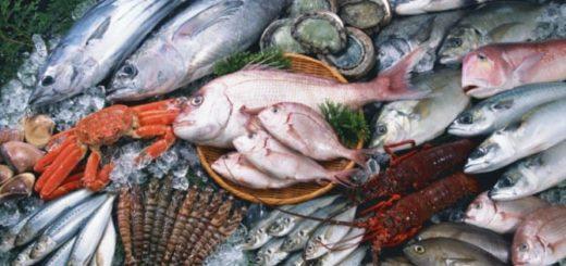 К чему снится рыба по толкованиям сонников и главные значения
