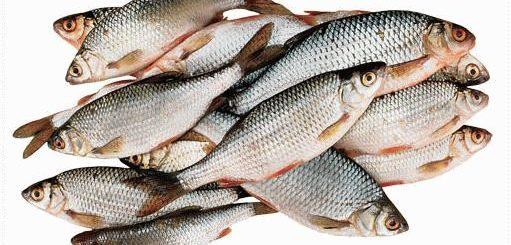 Что значит покупать рыбу во сне?