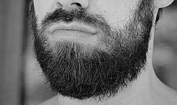 К чему снится борода по сонникам Фрейда, Миллера, Менегетти