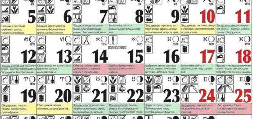 Лунный посевной календарь на август 2019 года