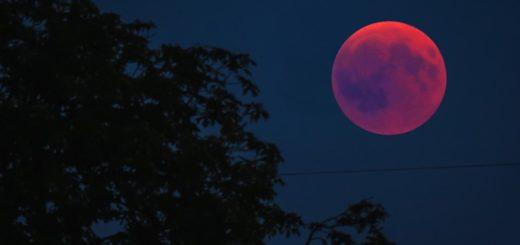 Лунные и солнечные затмения в 2019 году