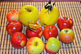 Преображение Господне и Яблочный Спас в 2018 году: обычаи, традиции, рецепты