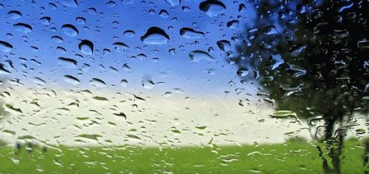 Приметы к дождю сообщат о предстоящем ненастье