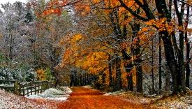 Славянские праздники ноября - Сварогов день, Свято Доли, Калита, Веданье