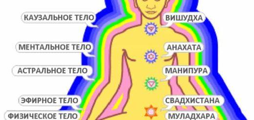 Тонкие тела человека, их виды: физическое тело и другие