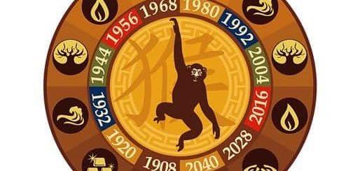 Год Обезьяны: какие года рождения, характеристика знака