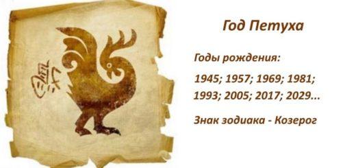 Год Петуха: какие года рождения, характеристика знака