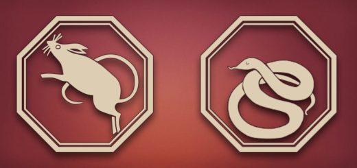 Совместимость Змея-Крыса: характеристика и отношения