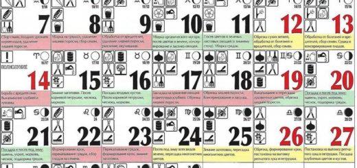 Лунный посевной календарь на октябрь 2019 года