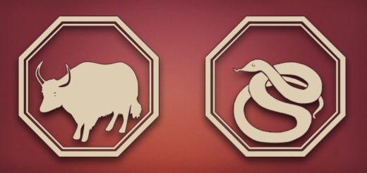 Совместимость Быка и Змеи