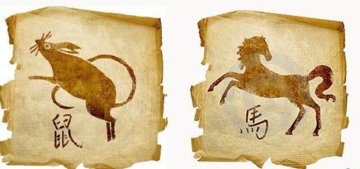 Совместимость Лошади иКрысы