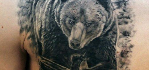 Тату медведь: значение и история