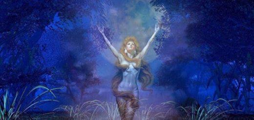 Венера в Деве у мужчины и женщины