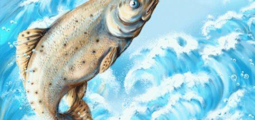 Что значит поймать большую рыбу во сне?