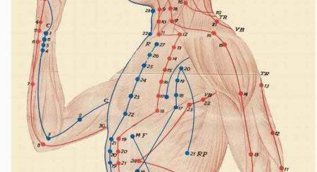 Энергетические меридианы тела человека: подробная карта